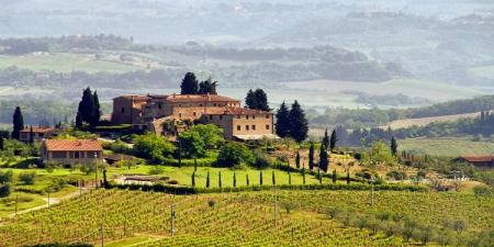 Chianti Tour from Florence with Wine Tasting and Lunch in the Tuscan Countryside with visits to the towns of Greve and Panzano - private tour