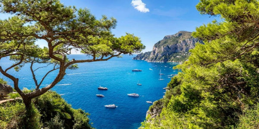 From Sorrento - Capri in One Day with Limoncello Tasting – small group tour