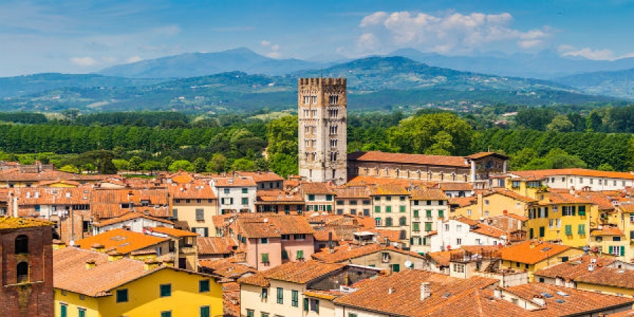 Explore the City of Lucca and Visit a Private Wine Estate outside of Lucca for a VIP Wine Tour and Tasting
