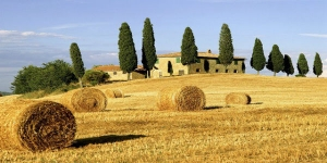 Cooking Class at a Farmhouse in Tuscany - small group tour