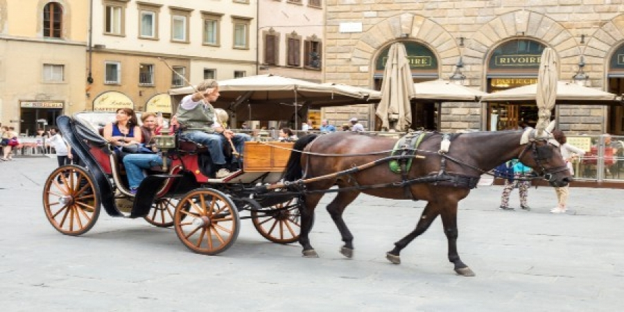 Florence Walking Tour with Horse-Drawn Carriage Ride - private tour