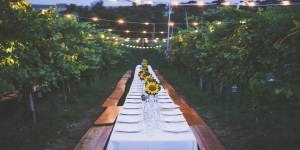 Dinner in the Chianti vineyards with departure from Florence - small group tour